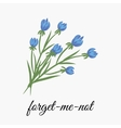 Flower forget me not vector image