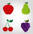 fresh fruit vector image vector image