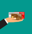 mans hand holds credit cards vector image