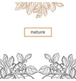 nature template branch vector image