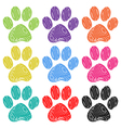 Paw Prints vector image vector image
