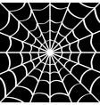 Spider web on black vector image