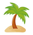 tree palm beach with sand summer icon vector image vector image