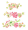 watercolor cactus and succulent bouquet vector image vector image