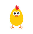 chicken icon vector image