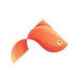 colorful fish logo ready to use vector image vector image