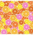 Colorful fruit pattern - seamless vector image vector image