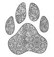 dog paw print entangle vector image vector image