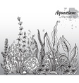 monochrome hand drawn with aquarium algae c vector image vector image