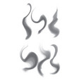 set of gray smoke curls objects separate from vector image