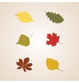 Autumn leaves set background vector image