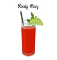 bloody mary cocktail with lime decorations vector image vector image