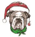 Bulldog 2 vector image