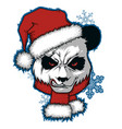 christmas poster with image panda portrait vector image