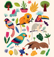 collection with tropical animals vector image vector image