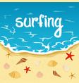 inscription summer summer and surfing sea beach vector image