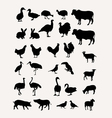Livestock Silhouettes vector image vector image