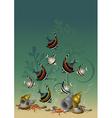 Motley fish and starfish among algae and shells vector image
