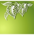 Paper Leaves Background vector image