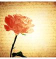 Vintage Pink Rose vector image vector image