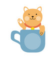 cute cat in mug cartoon vector image