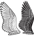 dove wings vector image