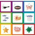 flat icon nature set of medusa algae fish and vector image vector image