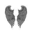 icon of gorgeous bird or angel wings with vector image vector image