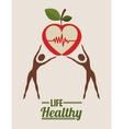life health design vector image