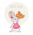 bunny cook vector image