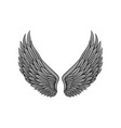 beautiful heraldic wings with gray feathers of vector image vector image