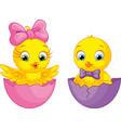 cute cartoon chicks vector image vector image