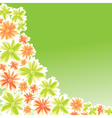 flower for card design vector image