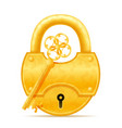 golden vintage lock and key stock vector image
