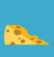 piece of cheese flat style vector image vector image
