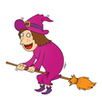Witch and magic boom vector image vector image