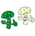 Broccoli and cauliflower vector image vector image