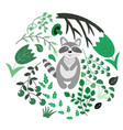 floral with a raccoon vector image