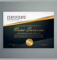 premium certificate design with golden stripe vector image vector image