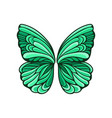 small green butterfly wings with beautiful pattern vector image