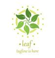 6 leaf logo template design vector image vector image