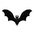 black bat silhouette vector image vector image