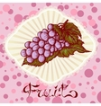 bunch of grapes color drawing card vector image