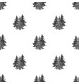 canadian spruce canada single icon in monochrome vector image