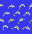 dolphines vector image