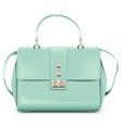 fashion woman handbag vector image