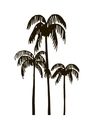 rain forest palm tree silhouettes vector image vector image