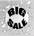the inscription big sale against the background vector image vector image
