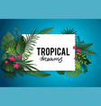 tropical dream poster vector image