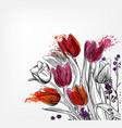 tulips card simple splash colorful sketch vector image